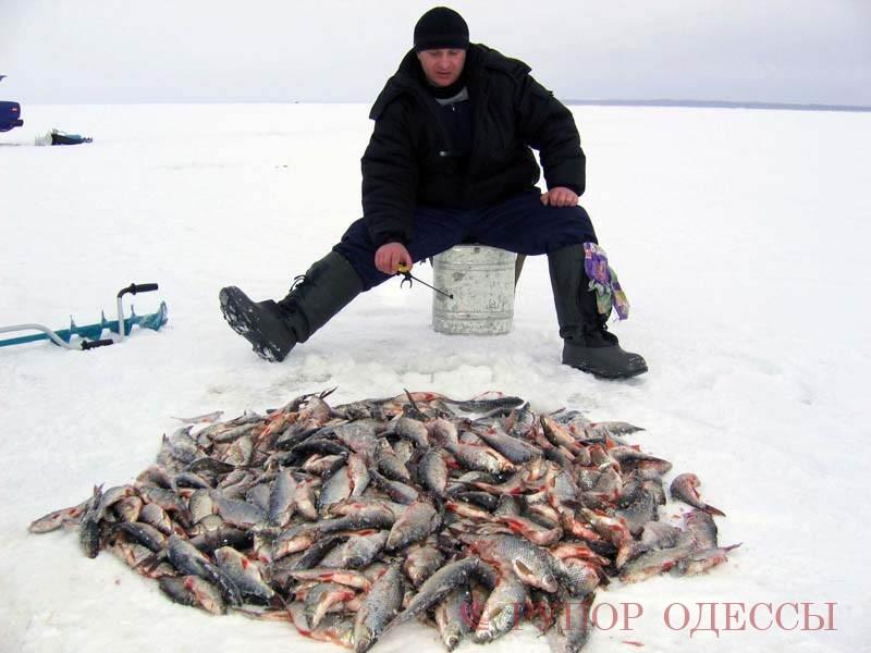 московский совет рыбаков
