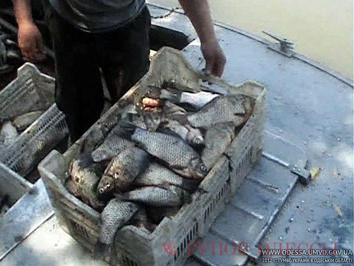 одесса 7 километр рыболовные сети