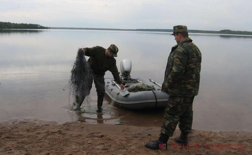 ловля рыбы на обмелевшем пруду почти сплошь