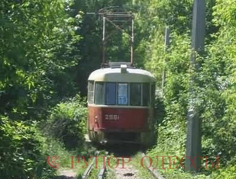 Справка: 19-й маршрут трамвая